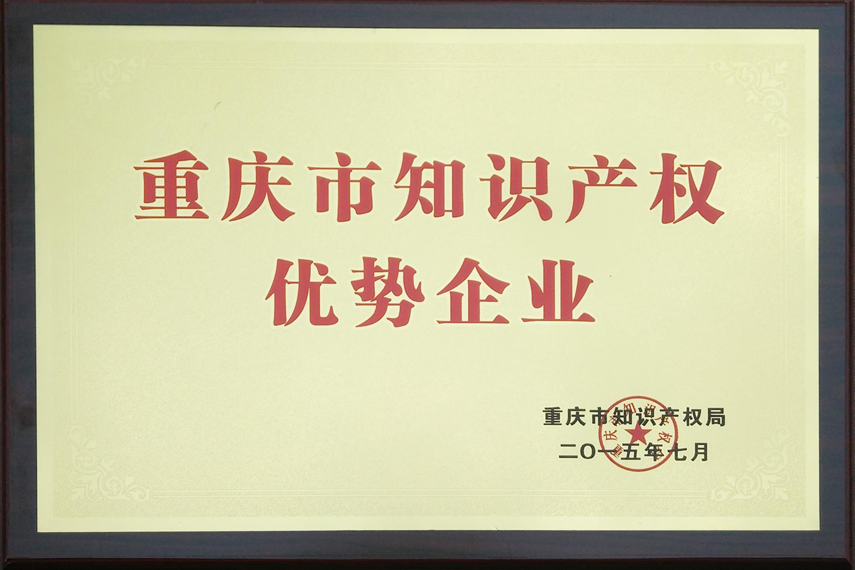 title='重庆市知识产权优势企业'